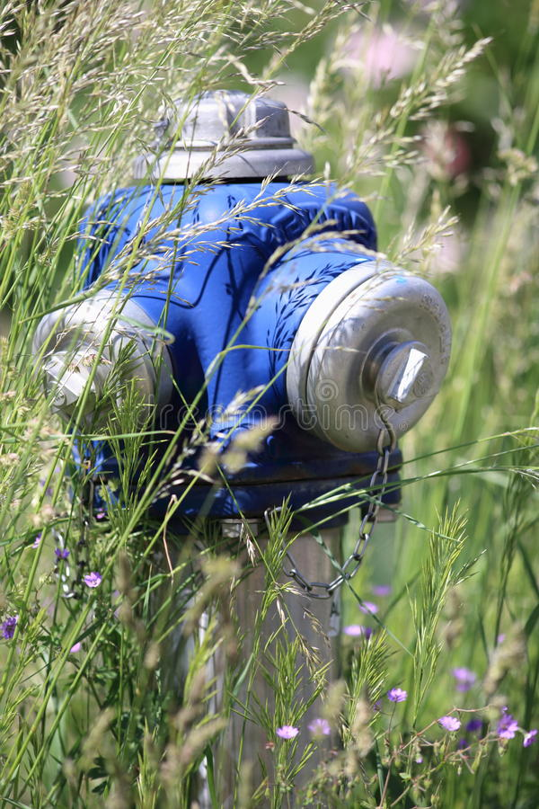Download Hydrant Overgrown With Grass Stock Image - Image: 31189199