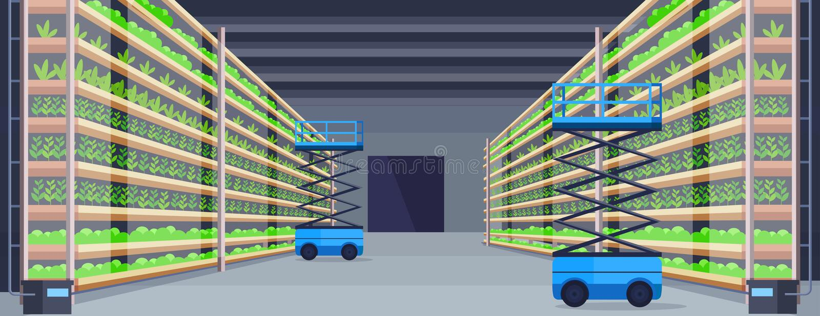 Hydraulic scissors lift platforms in modern organic hydroponic vertical farm interior agriculture farming system concept. Green plants growing industry royalty free illustration