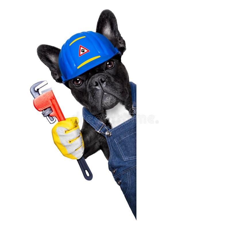 Hydraulika pies z wyrwaniem zdjęcie stock