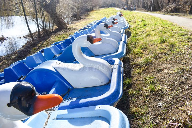 Hydrobikes or water bikes with duck shape near the park lake waiting tourists for fun.  stock images