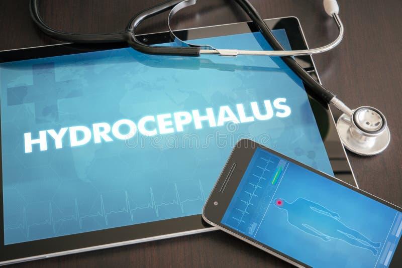 Hydrocephalus (neurological disorder) diagnosis medical concept stock photos