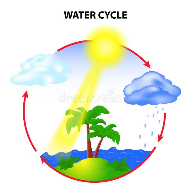 hydrological cirkulering royaltyfri illustrationer