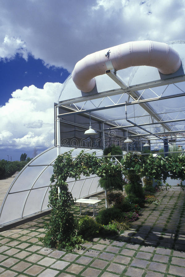Hydroponic landbouw bij de Universiteit van Milieu het Onderzoeklaboratorium van Arizona in Tucson, AZ stock afbeelding
