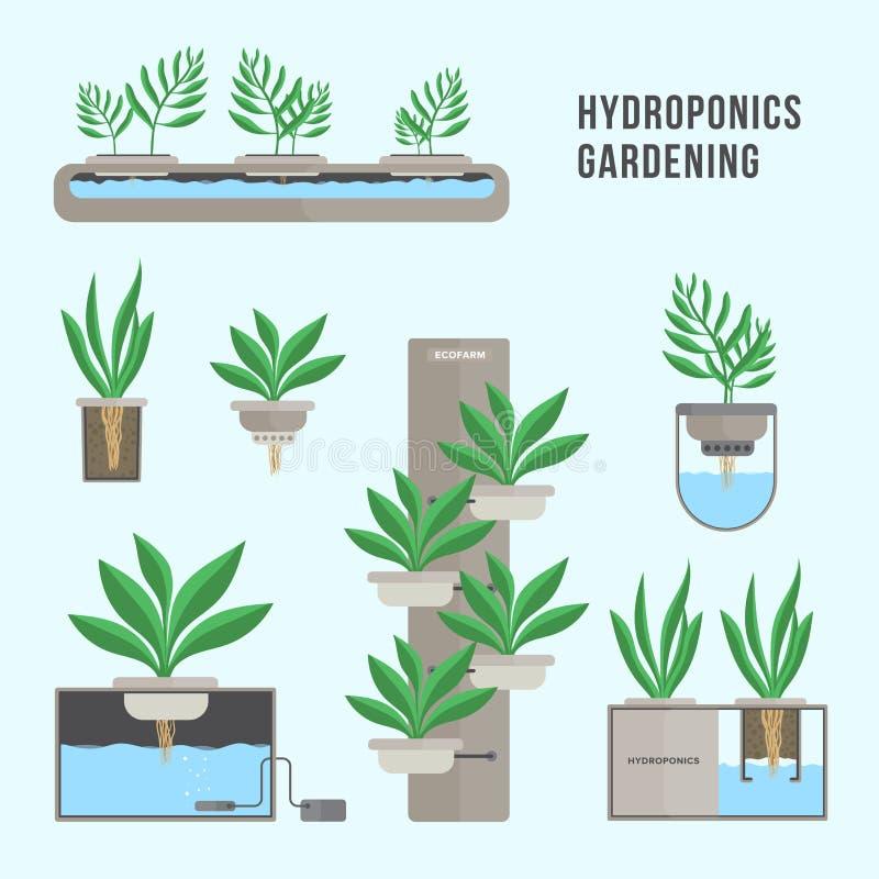 Hydroponic system som arbeta i trädgården teknologi Samling av olika växter i plan stil royaltyfri illustrationer