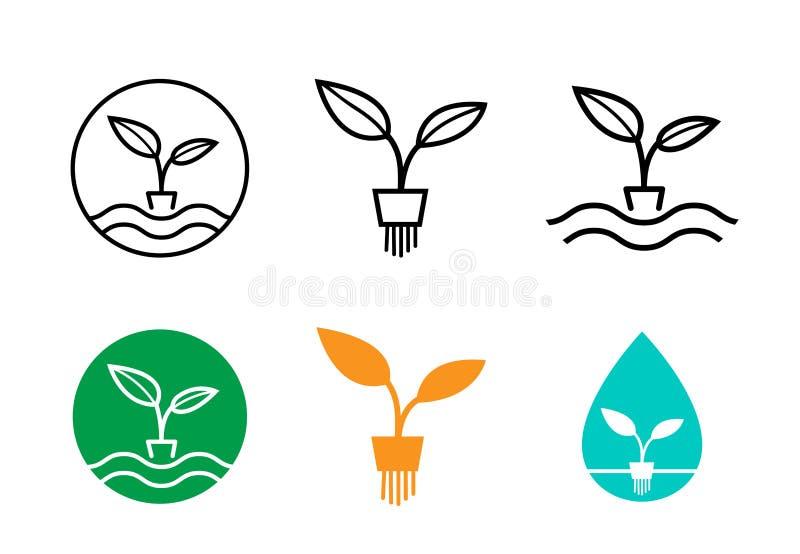 Hydroponikbetriebslogo und Symbol, Vektordesign lizenzfreie abbildung