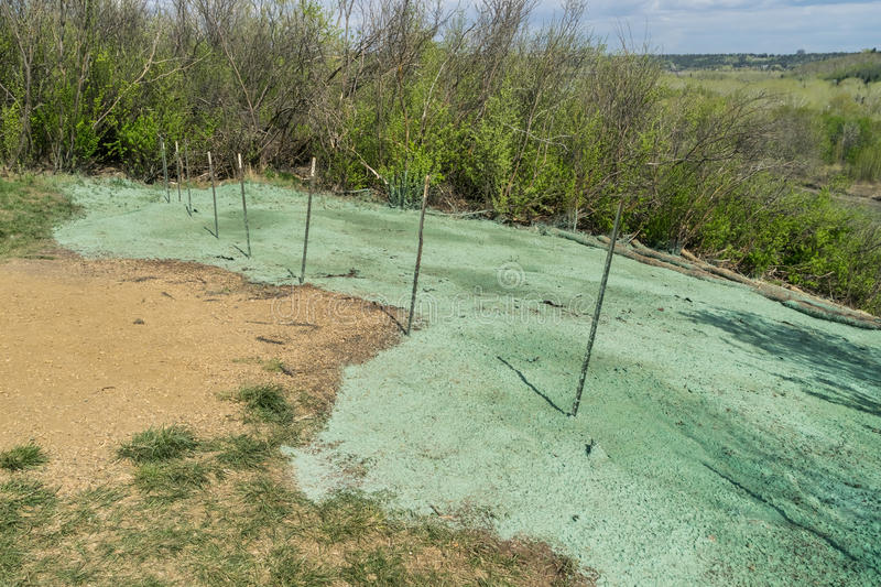 Hydroseeding. Hydro seeding landscaping project over pipeline royalty free stock images
