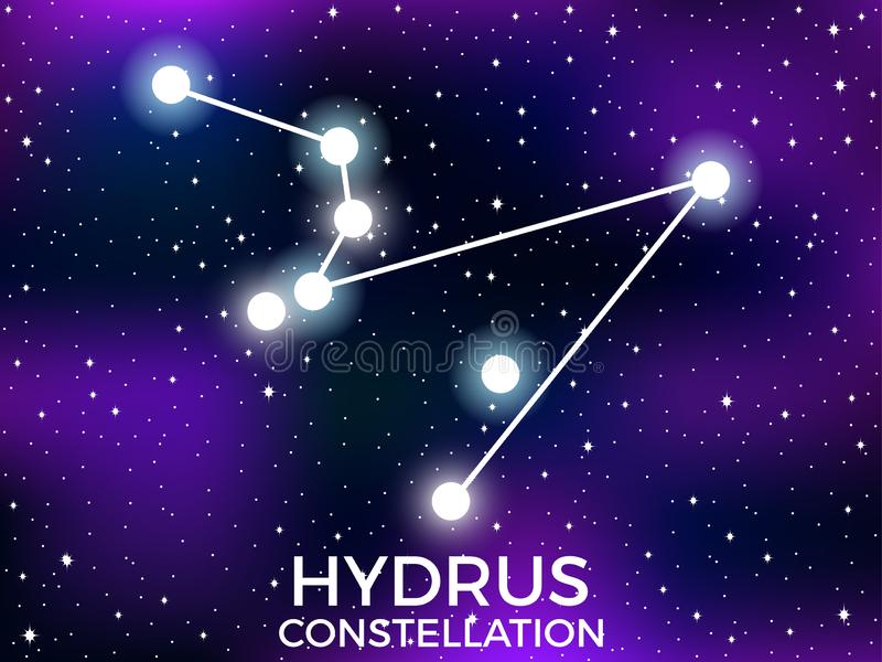 Hydrus constellation. Starry night sky. Zodiac sign. Cluster of stars and galaxies. Deep space. Vector. Illustration vector illustration