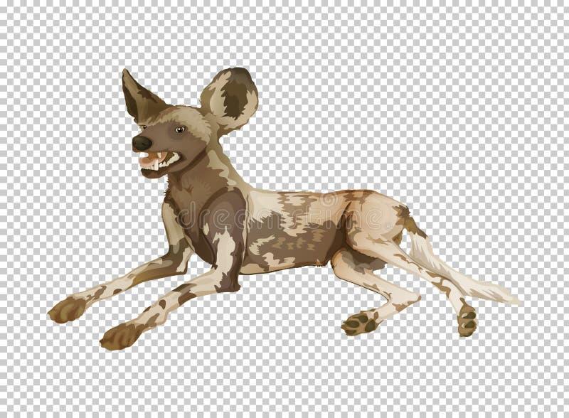 Hyena på genomskinlig bakgrund stock illustrationer