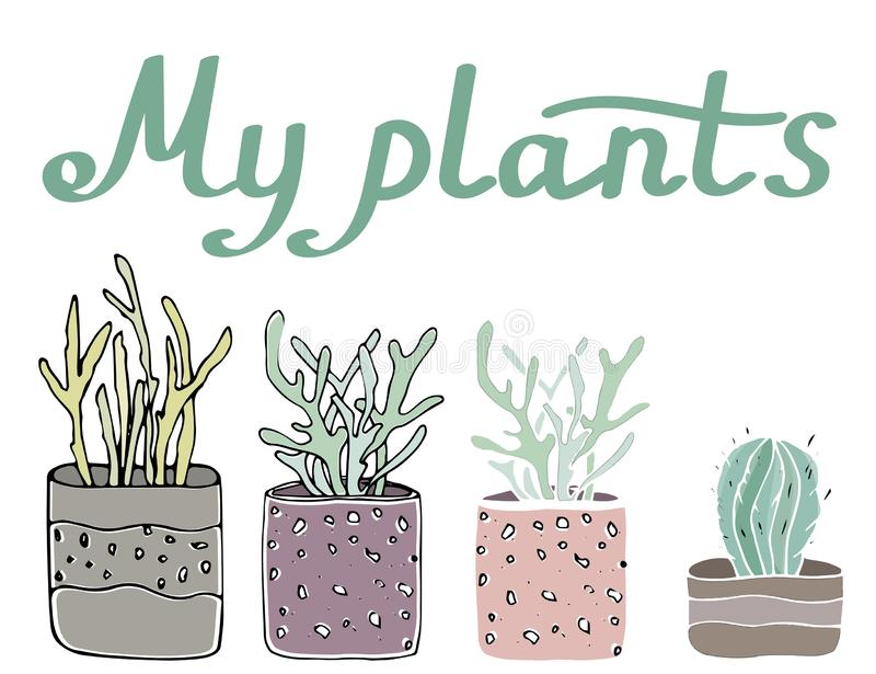 Sety cosy vector illustration elements  - potted plants. stock illustration