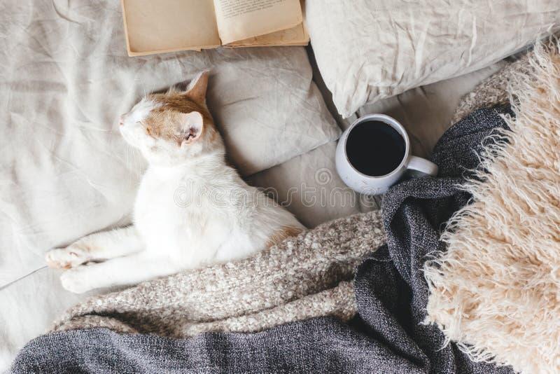 Hyggeconcept met kat, boek en koffie in het bed royalty-vrije stock fotografie