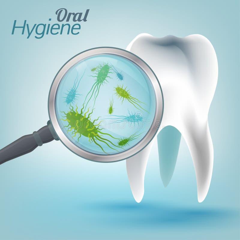 Download Hygiène 03 A de dents illustration de vecteur. Illustration du médical - 76085130