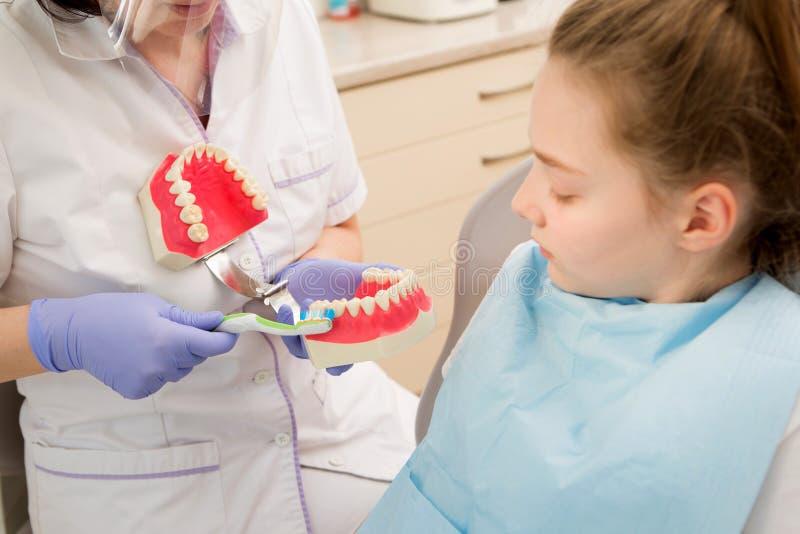 Hygiène dentaire Dentiste démontrant le brossage de dent photos libres de droits