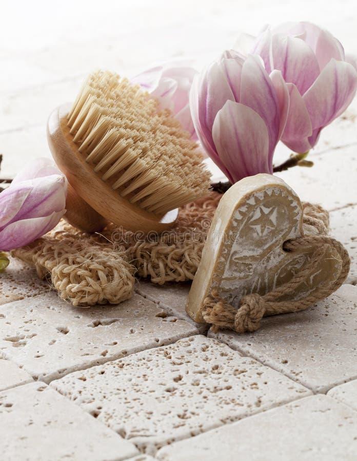 Hygien och hudföryngring royaltyfri bild
