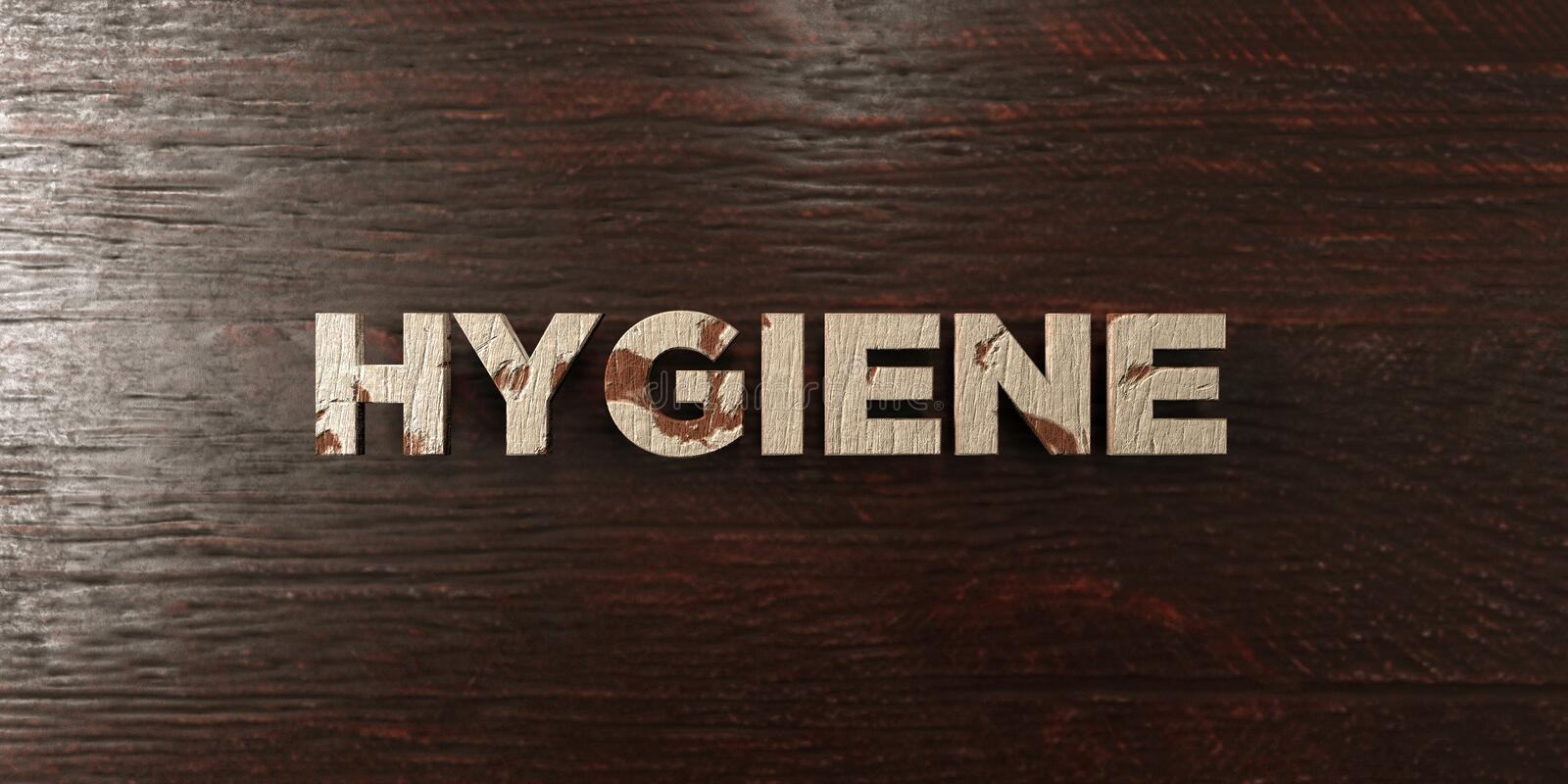Hygiene - grungy wooden headline on Maple - 3D rendered royalty free stock image. This image can be used for an online website banner ad or a print postcard vector illustration