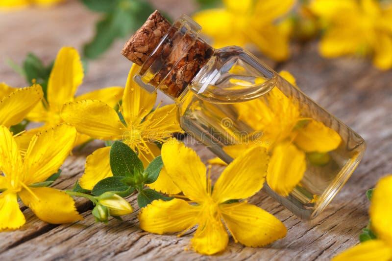 Hypericum olej w szklanej butelki makro- horyzontalnym obraz stock