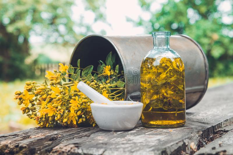 Hypericum - St Johns wort flowers, oil or infusion bottle, mortar and big vintage metal mug of Hypericum flowers. royalty free stock photography