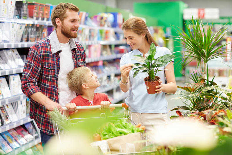 In hypermarket. Modern family buying products and dometic plant in hypermarket stock photography