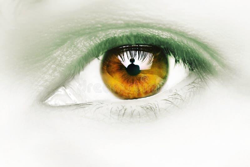 Hypnotic. Female eye, thirty something, cross processed royalty free stock images
