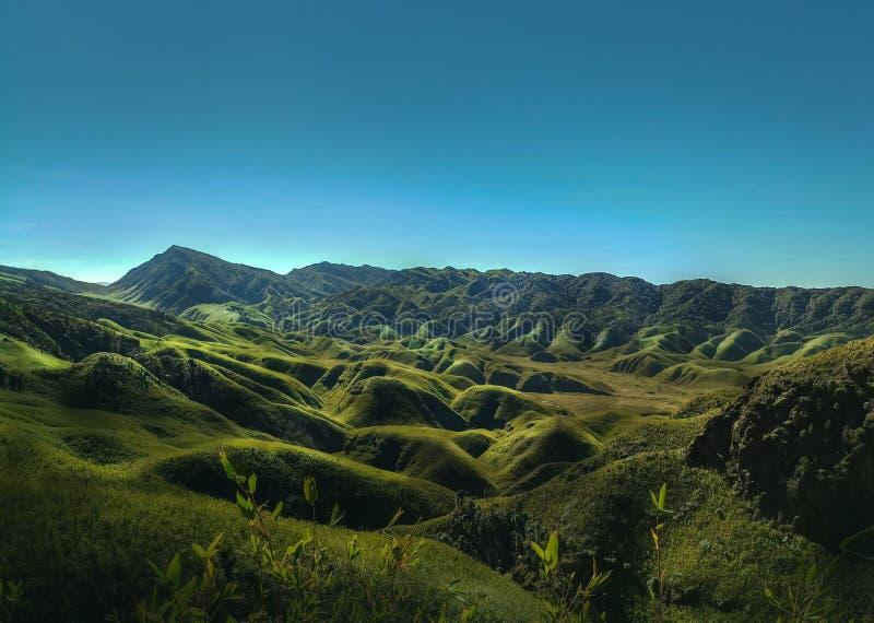Hypnotisierende Rolling Hills von Dzukou-Tal in Nagaland lizenzfreie stockbilder