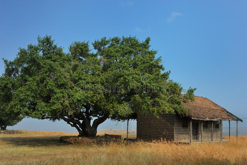 Hyug树和老房子Salabat可汗的圆顶的或knon作为Chandbibi钾玛哈尔艾哈迈德讷格尔马哈拉施特拉 库存照片