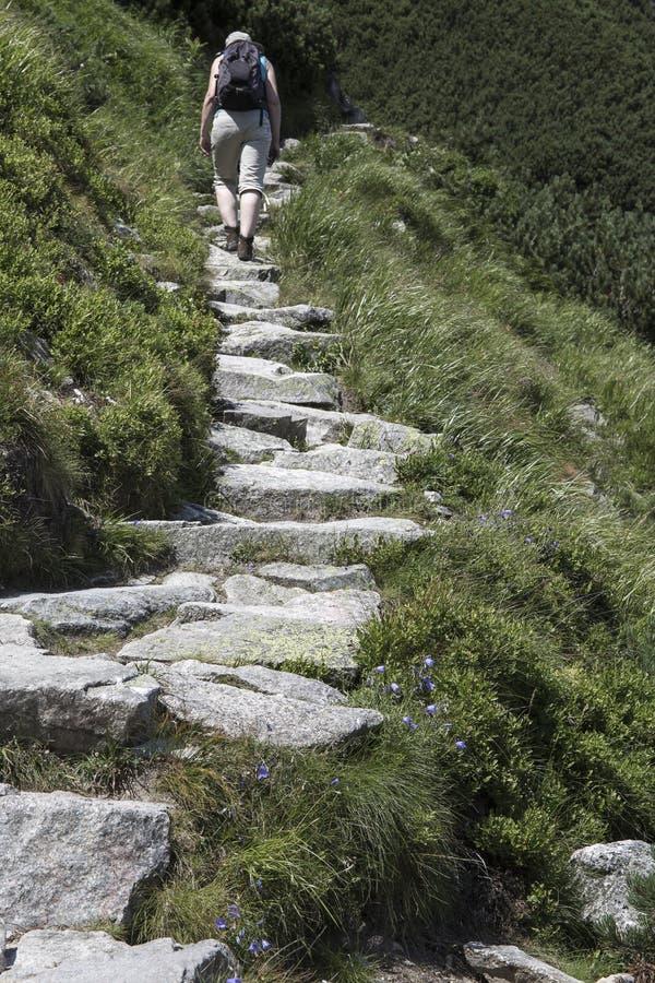 Iść na szczycie w górach obraz royalty free