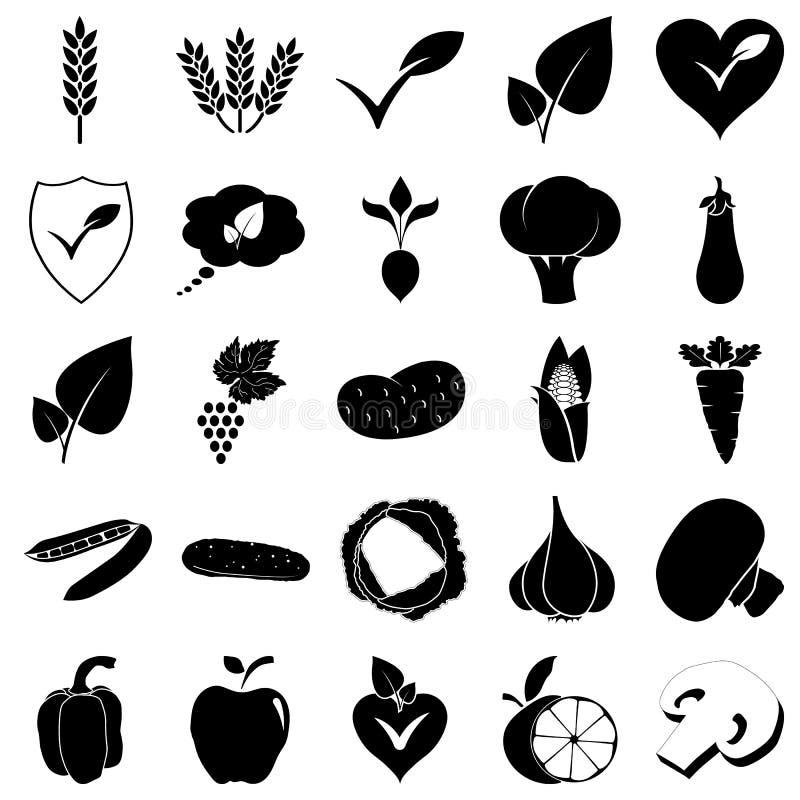 Iść weganin owoc warzyw jarska prosta ikona na kolorowym tle fotografia stock