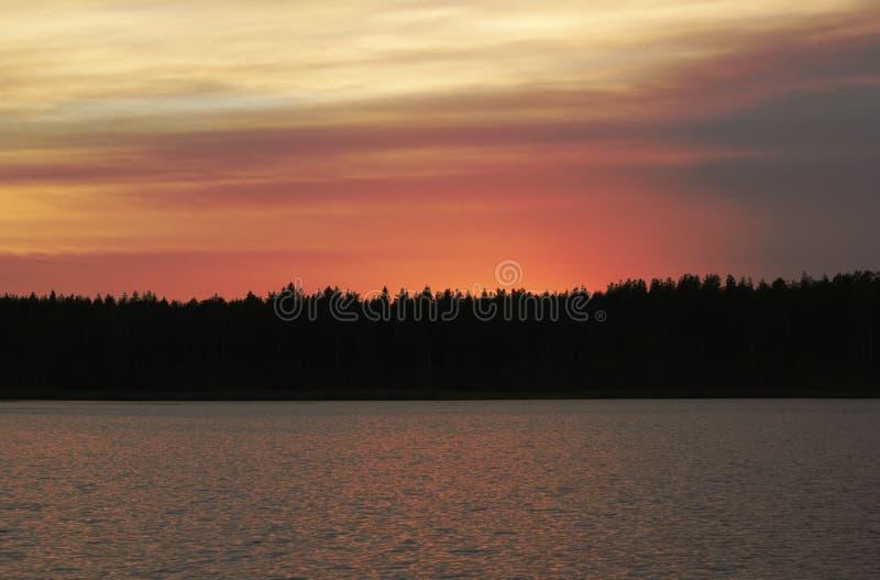 I aftonen dolde solen bak skogen royaltyfria bilder
