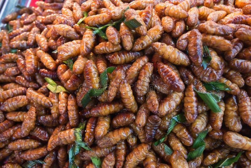 I bachi da seta fritti è alimento ricco di proteine degli insetti fotografia stock