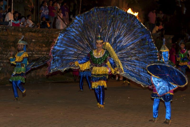 I ballerini del pavone eseguono durante il Esala Perahera a Kandy, Sri Lanka immagini stock libere da diritti