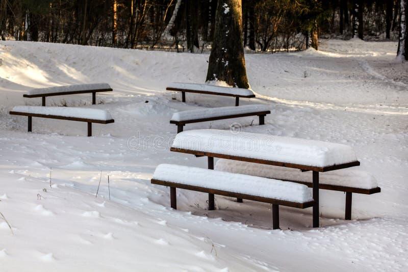 I banchi e lo scrittorio di picnic coperti di neve profonda durante l'inverno, sole splende attraverso gli alberi forestali nel f immagini stock