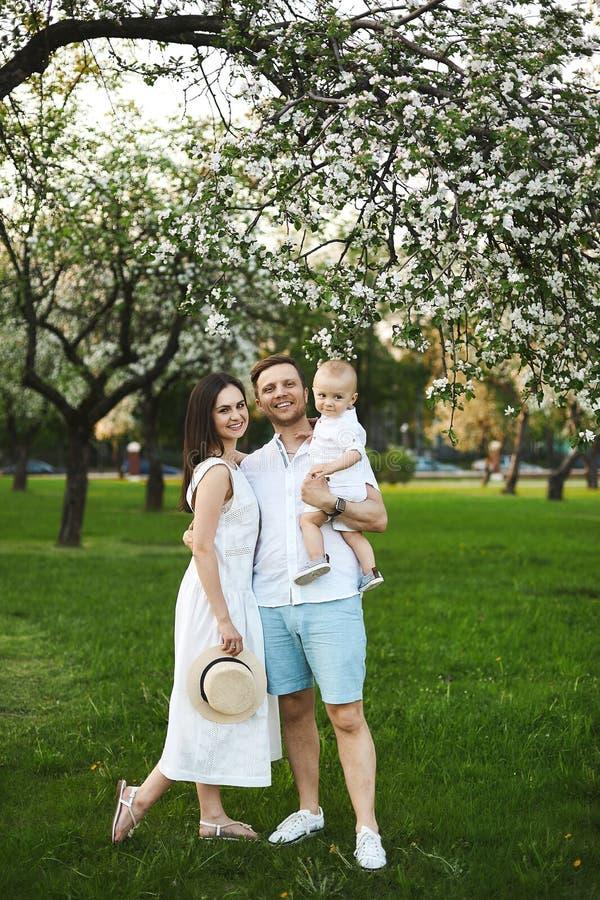 I bei giovani genitori ed il loro piccolo figlio sveglio si divertono vicino agli alberi di fioritura, famiglia felice fotografia stock