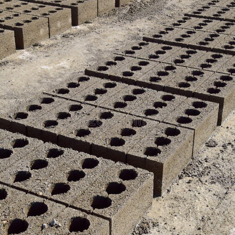 I blocchetti di cenere si trovano sulla terra e si sono asciugati su produzione del blocchetto di cenere fotografie stock libere da diritti