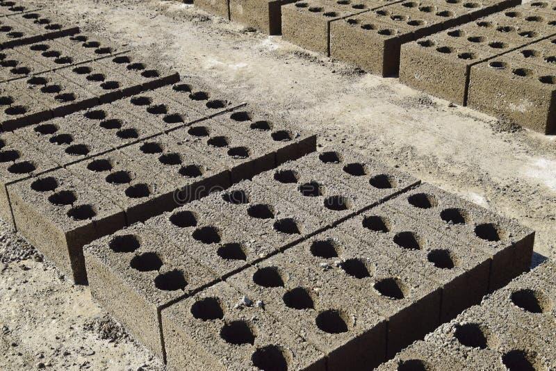 I blocchetti di cenere si trovano sulla terra e si sono asciugati sul produ del blocchetto di cenere immagine stock libera da diritti