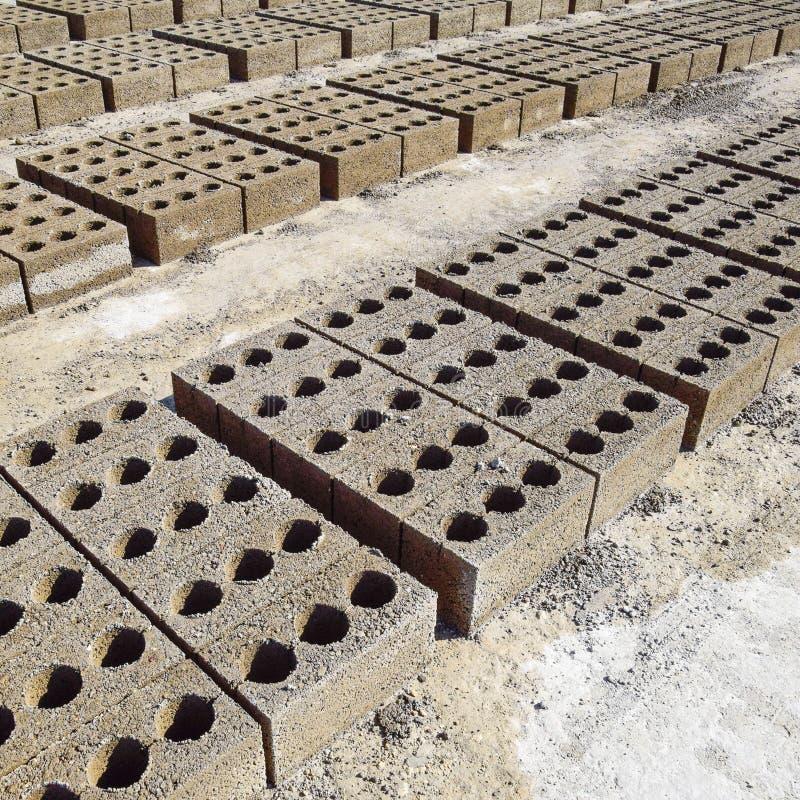 I blocchetti di cenere si trovano sulla terra e si sono asciugati sul produ del blocchetto di cenere immagine stock
