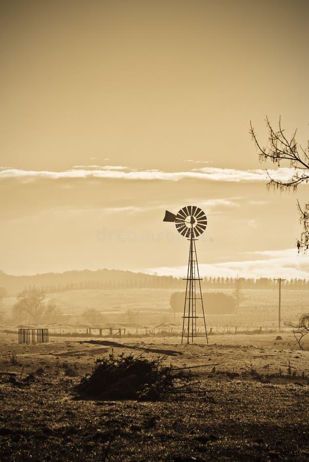 I brutti momenti asciugano la siccità sull'azienda agricola fotografia stock libera da diritti