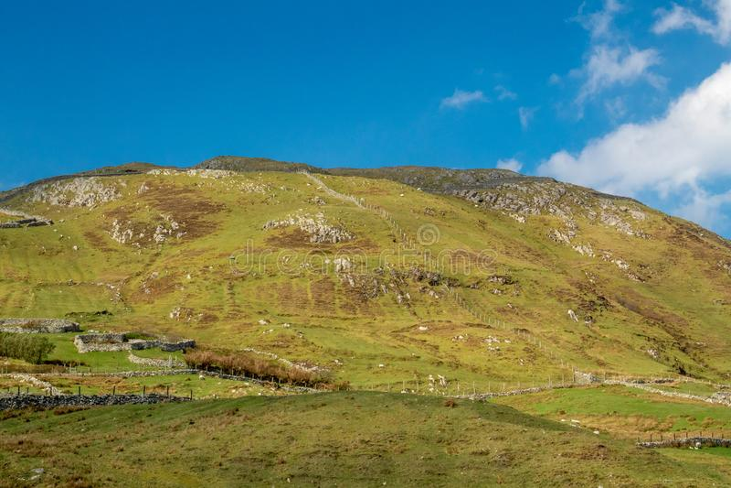I campi di Knocknaveen, Clare Island, contea Mayo, Irlanda fotografia stock libera da diritti