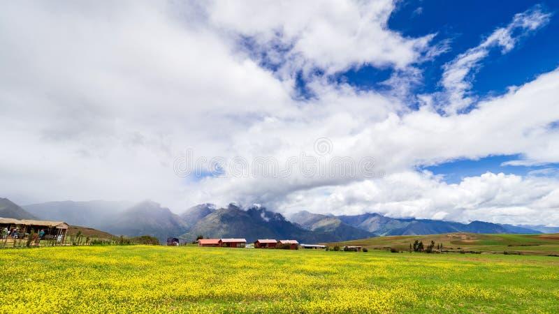 I campi fuori del sito di Moray immagini stock libere da diritti