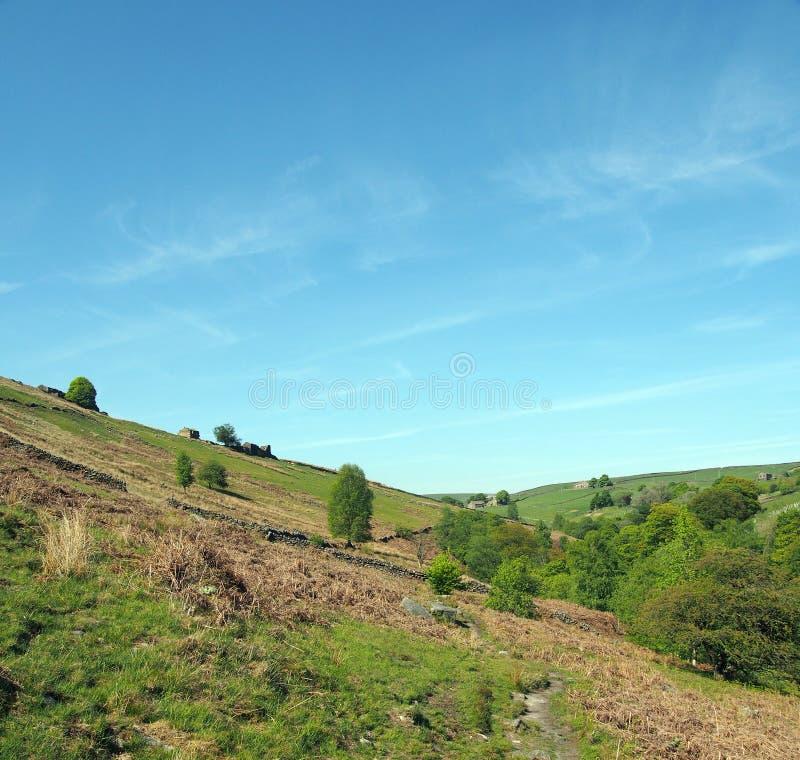 i campi verdi collinosi con erba hanno coperto il pascolo e le vecchie fattorie di pietra nelle vallate del Yorkshire a crimswort fotografia stock