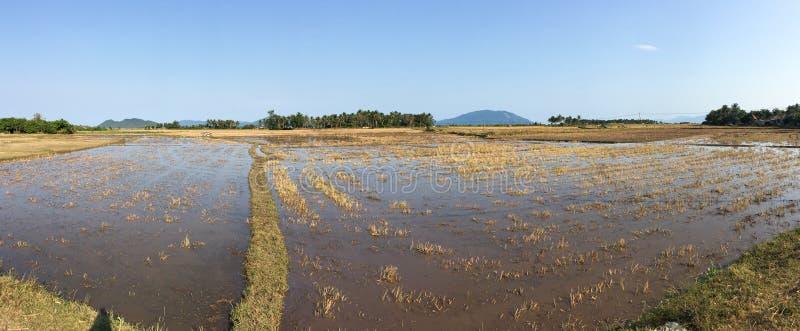 I campi vuoti in Phu Yen, Vietnam immagine stock