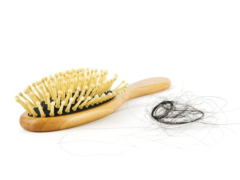 I capelli cadono con il pettine o la spazzola per i capelli isolata su fondo bianco, sui trapianti medici dei capelli di concetto immagine stock libera da diritti