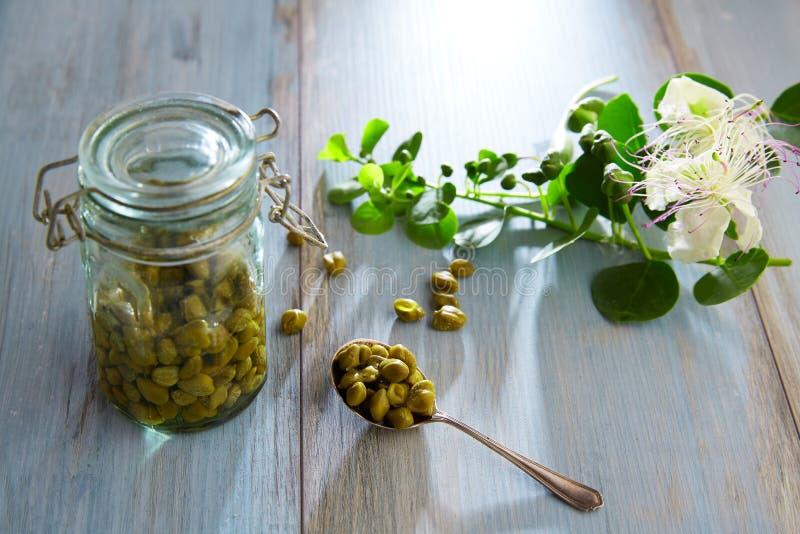 I capperi marinati con la pianta e la pianta del cappero fioriscono immagine stock