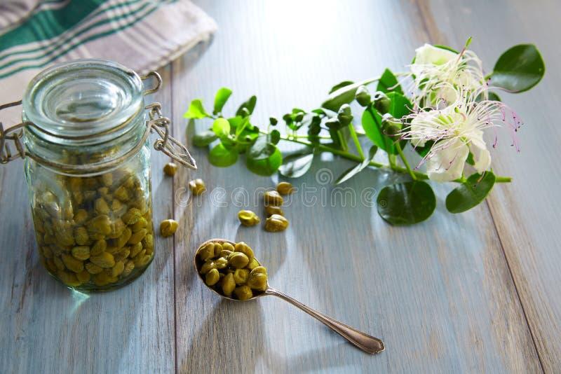 I capperi marinati con la pianta e la pianta del cappero fioriscono fotografia stock