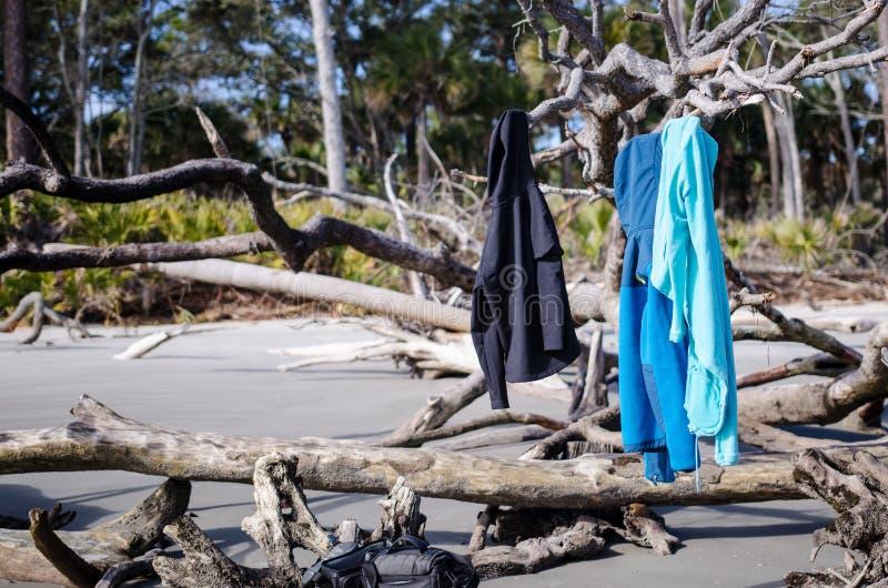 I cappotti e l'abbigliamento pendono dagli alberi morti del legname galleggiante nel parco di stato dell'isola di caccia in Carol fotografia stock libera da diritti