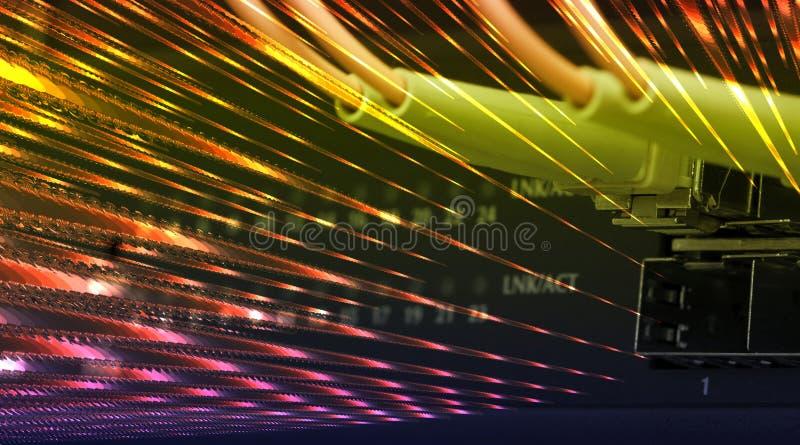 I cavi ottici della fibra hanno connesso ad un interruttore immagine stock libera da diritti