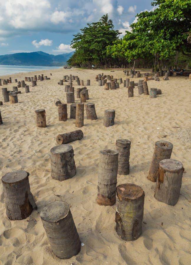 I ceppi della noce di cocco sulla spiaggia hanno preparato per il partito di notte, Samui, Thailan immagine stock libera da diritti