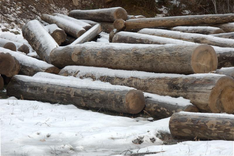 I ceppi di legno accatastano alla neve immagini stock