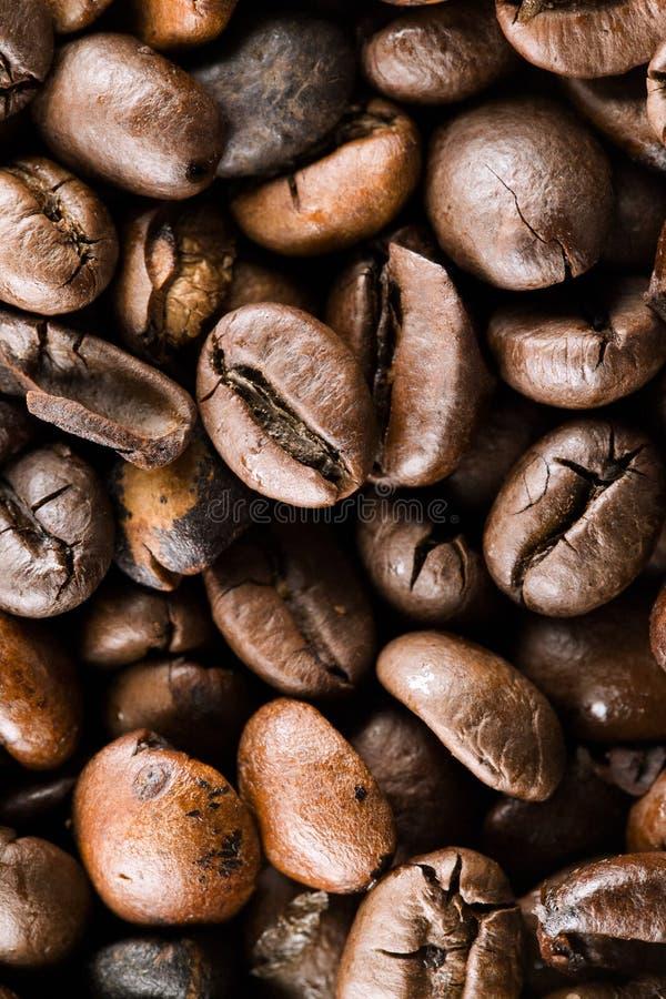 I chicchi di caffè fotografie stock libere da diritti