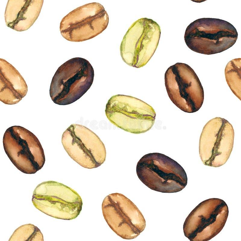 I chicchi di caffè differenti livellano gli arrosti da luce a buio su fondo bianco illustrazione di stock