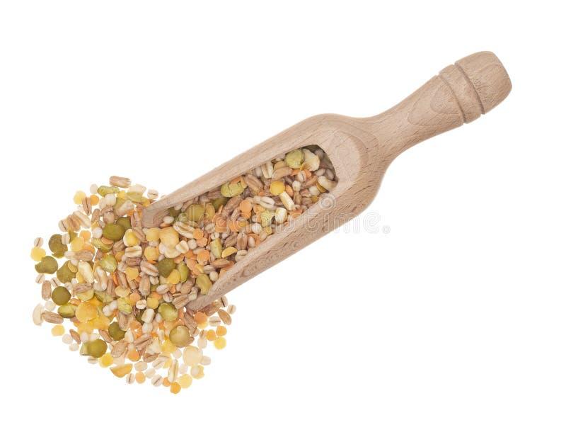 I chicchi di grano ed i fagioli, pulsa miscela Mucchio con il mestolo, isolato su fondo bianco fotografie stock