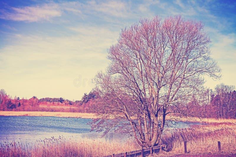 I colori d'annata hanno filtrato il paesaggio rurale pacifico fotografia stock libera da diritti